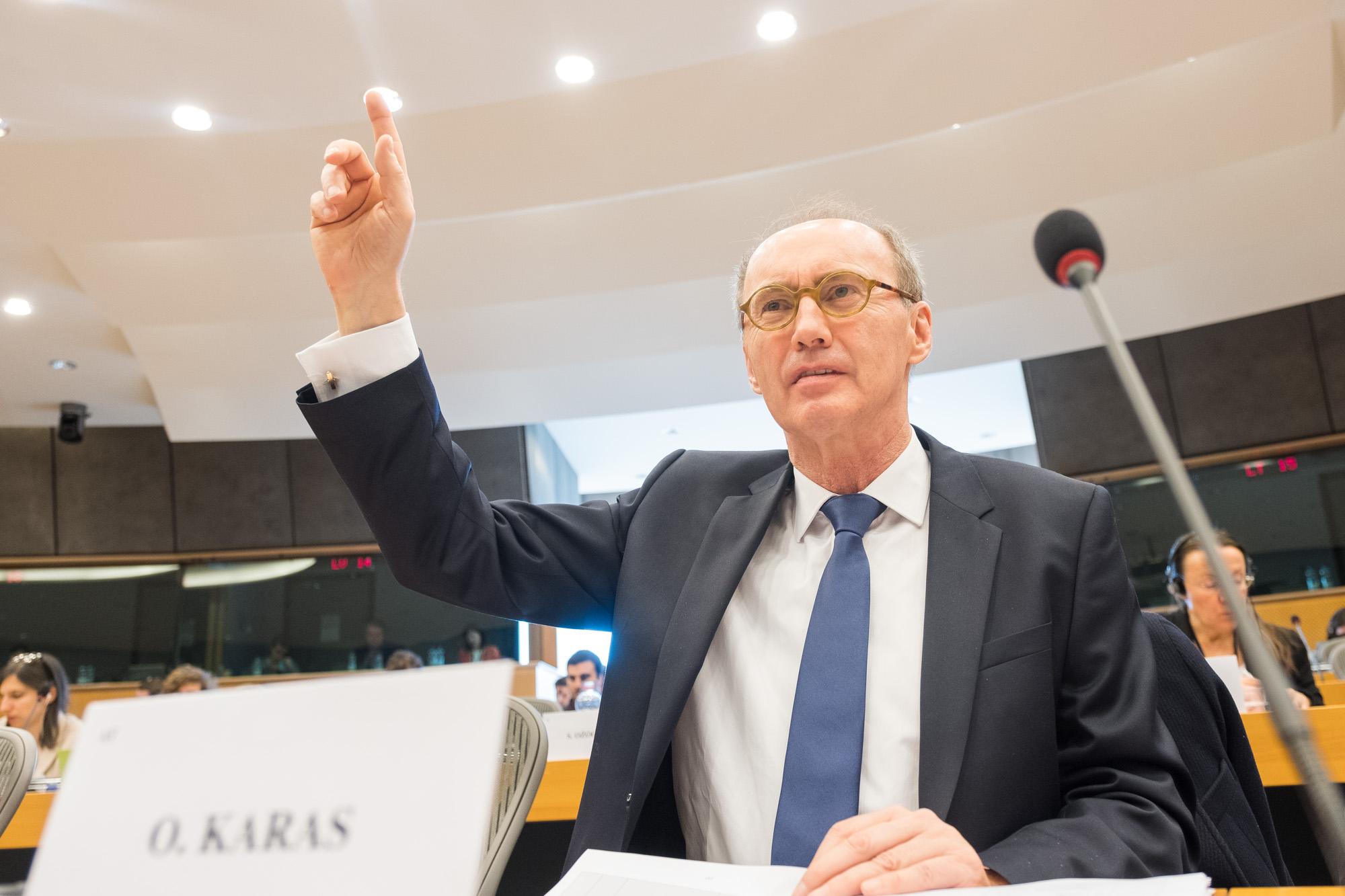 OK im Plenum (c) European Parliament